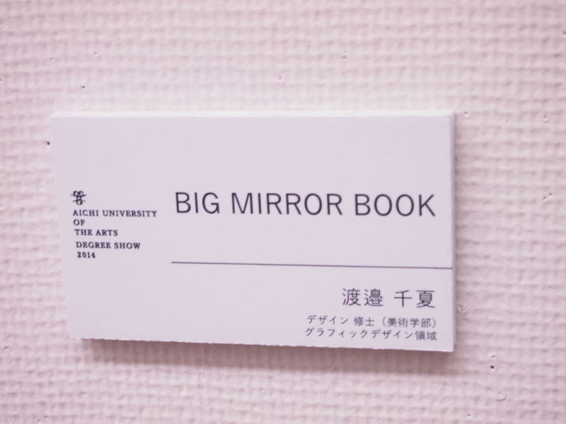 Big Mirror Book2